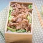 きょうの料理ビギナーズはしょうが焼き弁当、ひき肉の親子丼弁当レシピ!