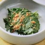 NHKきょうの料理は青じそのしょうゆ漬け・セロリのつくだ煮・夏そぼろ・青じそおにぎりレシピ!大原千鶴の手仕事