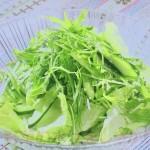 NHKきょうの料理ビギナーズはグリーンサラダ・新たまねぎのサラダレシピ!基本のシンプルサラダ