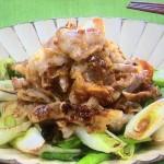 NHKきょうの料理ビギナーズは炒めねぎの豚肉のっけ・ねぎと鶏肉の串揚げレシピ!