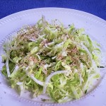 栗原はるみの春キャベツのごまコールスロー・煮豚梅風味レシピ!NHKきょうの料理