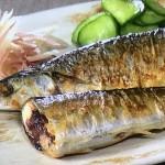 NHKきょうの料理ビギナーズはさんまのフライパン塩焼き・さんまのチーズパン粉焼きレシピ!