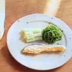 NHKきょうの料理はさけとねぎの甘酒蒸しとピーマンのナムル・塩いか蒸しと蒸しビーフンレシピ!白崎裕子