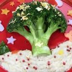 NHKきょうの料理はブロッコロリン・クリスマストリーレシピ!平野レミ