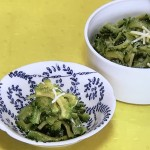 NHKきょうの料理はゴーヤーのにんにくじょうゆ漬け・ゴーヤーのかき揚げレシピ!高井英克